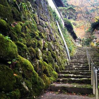 2012・11銀杏階段.jpg